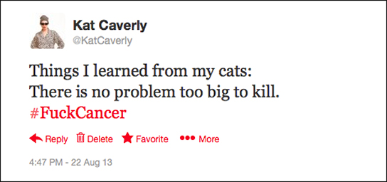 tweet from @katcaverly August 29, 2013 4:47PM